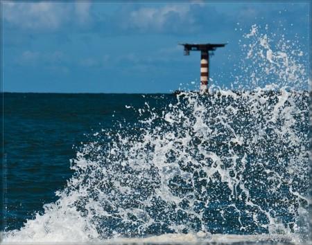 Wannabe Tsunami